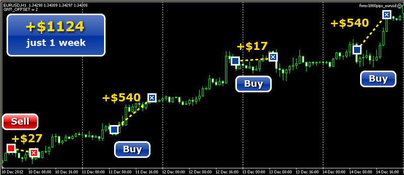 Forex 1000 pips robot review